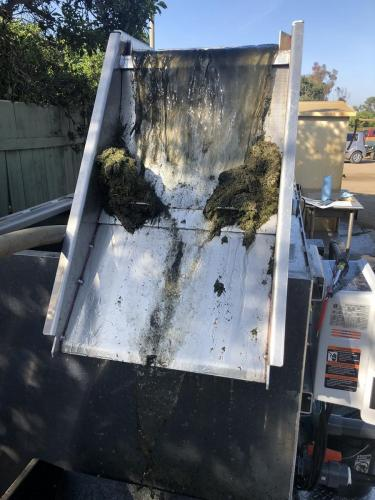 SCE BIO GT - Grass Falling Into Container